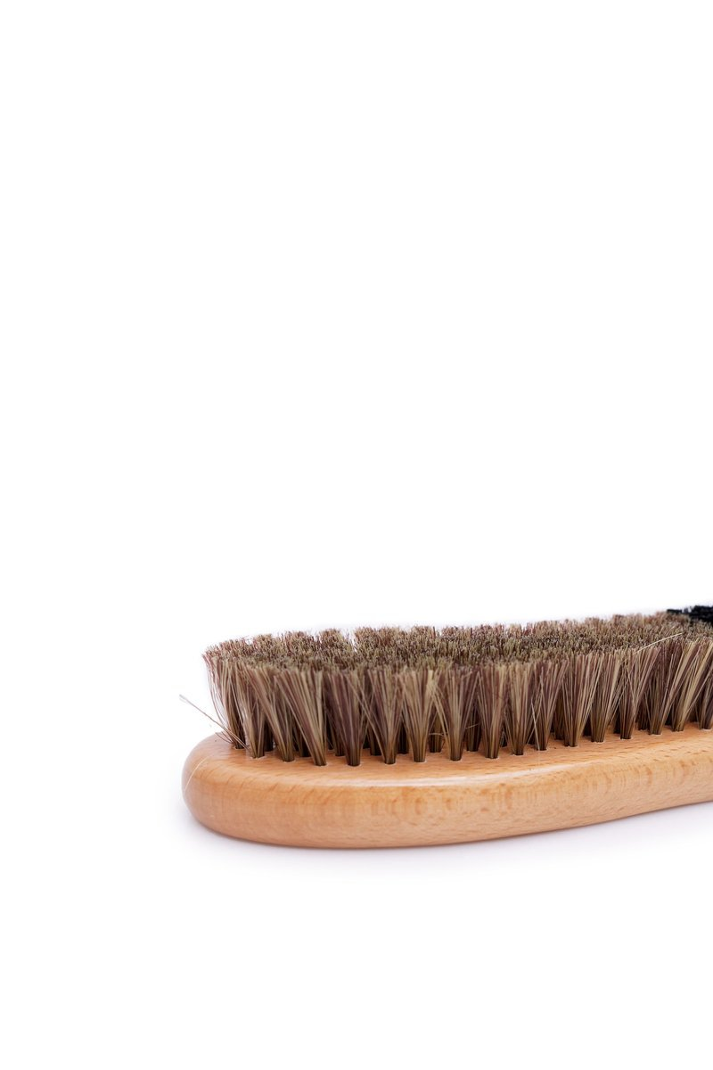 SALTON Shine Brush Shoe